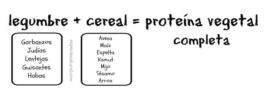legumbre+cereal=
